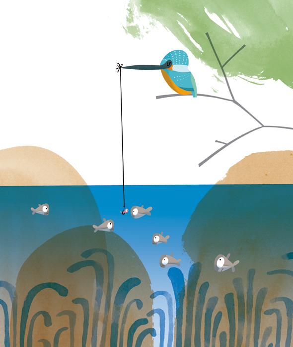 ocells01